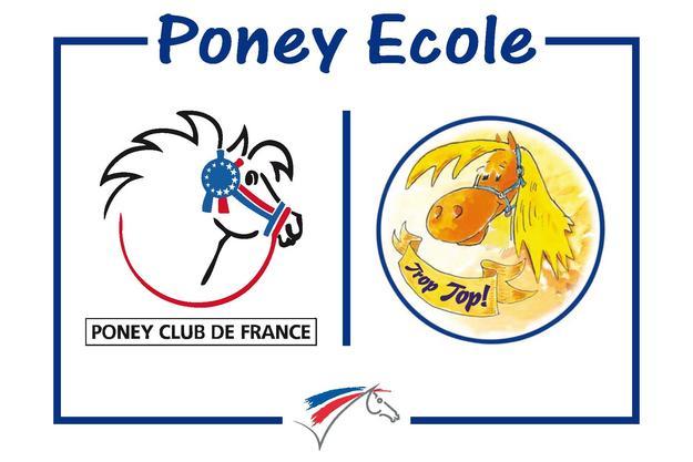 Poney ecole